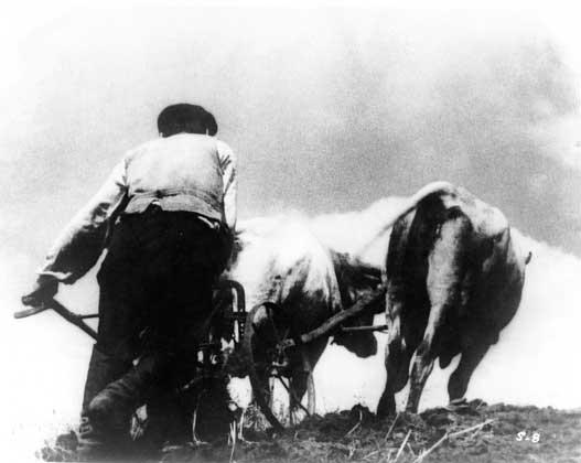 """Кадр із фільму """"Земля"""" (реж. Олександр Довженко, Україна, 1930)"""